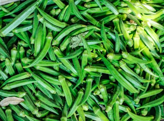 we have packaging for okra