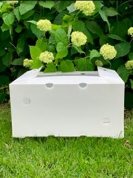 corrugated plastic box